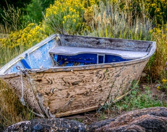 Old Row Boat in Flower Bed