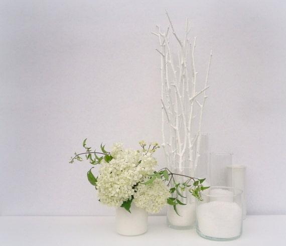 White branches white wood sticks white tree branches - White painted tree branches ...