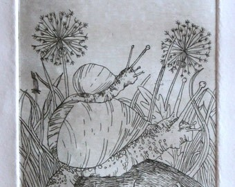 Snail etching, Home decor, Hand pulled print