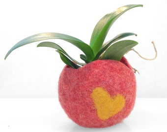 Felted wool planter. Original planter for cactus, succulent, air plant, orchid, plant holder or Candy bowl