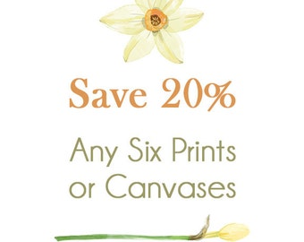Create your Own SET of SIX Prints or Canvases - Fine Art Photography, Gallery Wrapped Canvas, Fine Art Prints, 5x7, 8x10, 11x14
