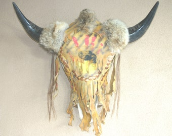 Bison Skull Real Buffalo Head