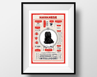 Havanese Breed Printable Poster, Digital Dog Breed Infographic Wall Art, Havanese Lovers Gift, Letterbox Red/Sea Green