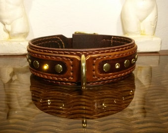 two color leather dog collar