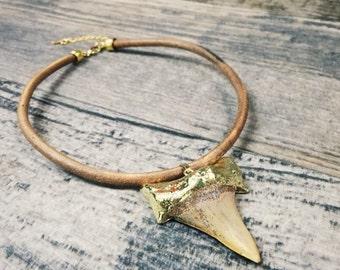 Shark Tooth Fossil Collar