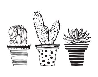 Cactus illustration | Etsy AU