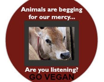 Vegan Activism Stickers - Set of 12
