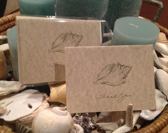 Shell Thank You Cards, Set of Six