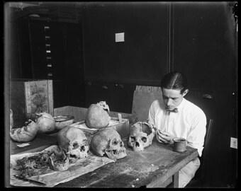 Vintage photo skull art print photography creepy unusual strange weird goth gothic art antique photograph 1930s-PRINT