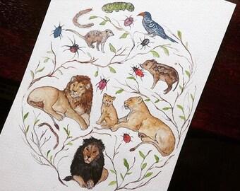 Disney Series: The Lion King