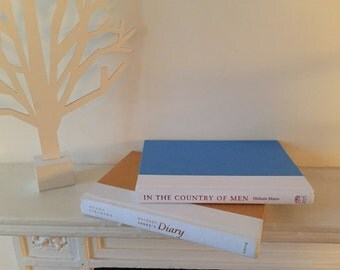 A set of 2 decorative books