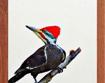Woodpecker painting, bird painting, wildlife watercolour, bird wall art, digital print.