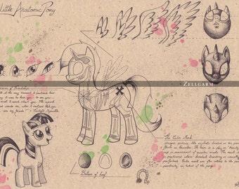 Medium - My Little Pony