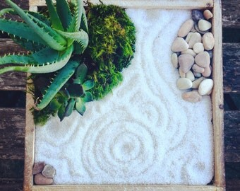 Living zen garden kit