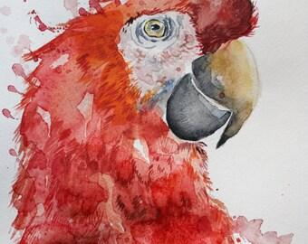 Original Watercolor Painting, Parrot Bird, Red Macaw, Painting bird, wall art, home decor art, red bird, tropical, Original Animal Art OOAK