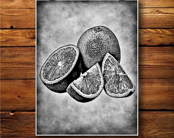 Citrus Decor, Orange Print, Tangerine Poster Illustration  BW310