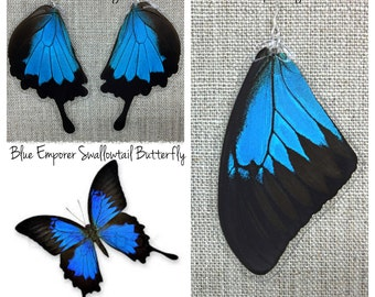Real Butterfly Wing Jewelry - Earrings Cobalt Blue and Black- Large