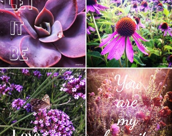 More shades of purple