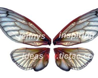 Deep Cicada Wings