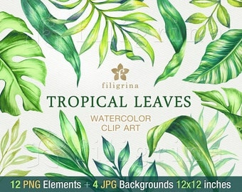 Tropical Leaves WATERCOLOR Clip Art. Fresh foliage, jungle nature, exotic garden, palm monstera. 12 elements 4 backgrounds. Read about usage