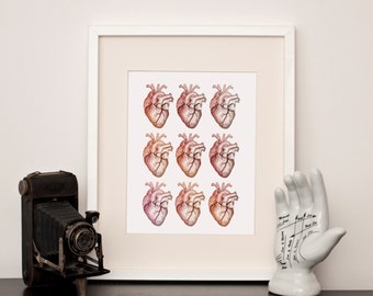 Anatomical Heart Multi-  Art Print - Choose a size