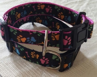Dog Collars hand crafted in Australia