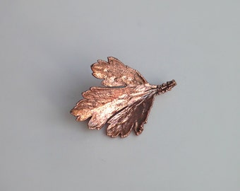 Brooch Parsley