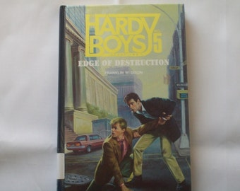 Hardy Boys Case Files No 5--Edge of Destruction
