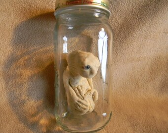 Bizarre One of a kind Oddity weird Alien? Mongoloid? Chupacabra? Fetus? in Bottle Sideshow Gaff? Hand Sculpted Creature