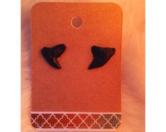 Handmade Shark Tooth Stud Earrings