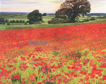 Fine Art blank greetings cards pack of 6- 'Poppyfields'