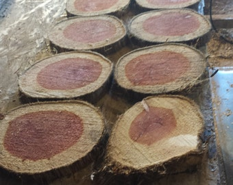 Aromatic Cedar Rounds