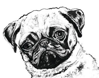 Grumpy Pug Ink Drawing Small Print