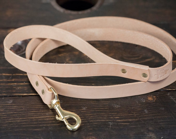 Natural Vegetable Tanned Leather Dog Leash with Brass Hardware 5 feet long
