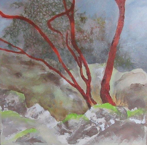 Arbutus Ridge 1