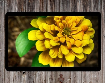 Yellow Flower, Floral Photography, Floral Art, Flower Print, Plants Photo, Nature Photo, Spring Flower, Printable Wall Decor, Yellow Decor