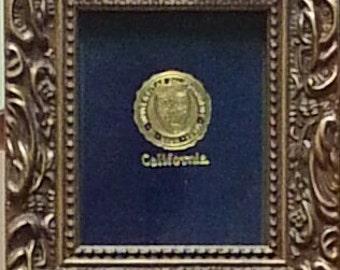 Cal Berkeley Golden Bears Framed Vintage Tobacco Leather
