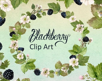 Watercolor Blackberry Clip Art