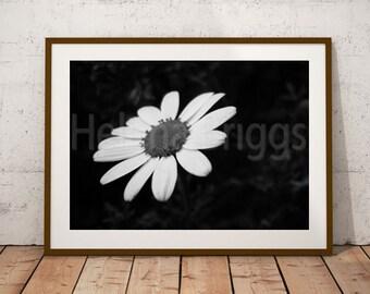 Black and White Abstract Print, Black and White Artwork, Living Art, Living Wall Art, Living Room, Living Room Wall Art, Living Room Art