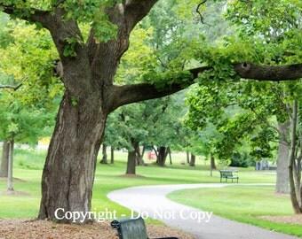 A Walk in the Park, Geneva, IL