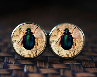 Insect cufflinks, Bug cufflinks, Insect jewelry, bug jewelry, vintage style Insect cufflinks, Victorian Insect bug cufflinks