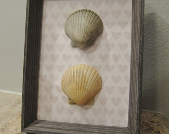 Frame with Scallop Seashells-  touch of whimsy!- Coastal Decor, Beach Decor, Nautical Decor
