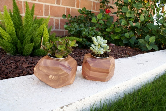 Modern Cedar Wood Geometric Succulent Planter