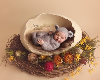 Little Pose ~ Wildflowers Egg Nest Newborn Digital Background High Res jpg file