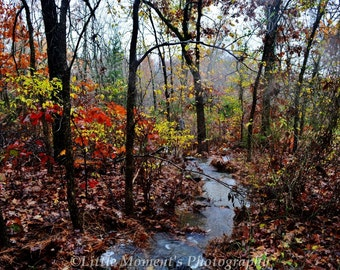 Water Fall, Digital Download, Photography, Photo, Art
