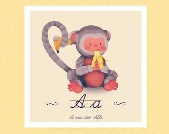 Animal ABC - A Monkey