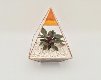Pyramid Stained glass amber terrarium planter cacti succulents