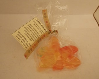 Chicken Soup Soap Anti-Nausea and Immune-Boost Blend Soap