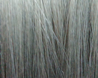 Remy Human Hair Extension Clip in Streak -  Silver Gray 12""