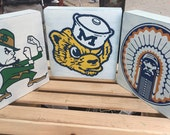 College Retro Mascots ~ Notre Dame, Michigan, Illinois, Minnesota, Wisconsin, Purdue ~ Weathered Wood ~ Great graduation gift!